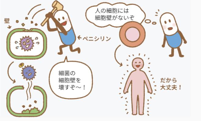 物質 コロナ 抗生